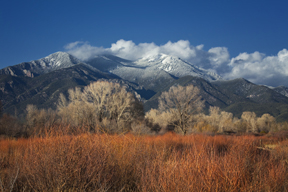 Taos Mountain with Red Willows